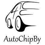 AutoChipBy